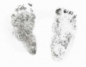 Ellie's Foot Prints